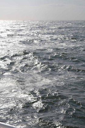 Nordsee-Wellen